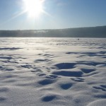 Early spring in Lapland