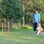 """Training to """"sit and wait"""" before an agility run - summer 2012."""