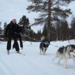 Skijoring with friends in Lapland.