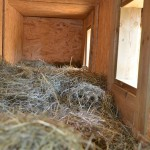 The dog houses are filled with hay or straw