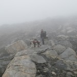 A dense fog made it almost impossible to follow the trail markings during out first day.