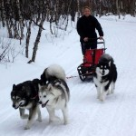 Fun ride in 2006 - Thunder and Tuisku in lead, Leia in wheel.