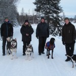 Our dog walking group this Sunday - three male dogs and puppy Lyra.
