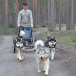Tuisku, Titan & Gem out on a ride with Fredrik.
