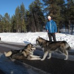 Lyra meeting her brother Xion in Swedish Lapland.