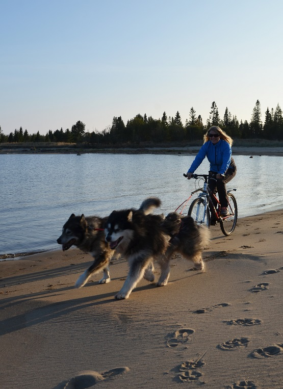 BeachBikejoring
