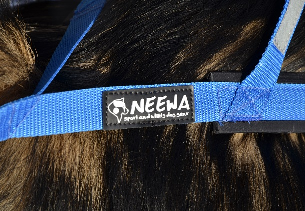 Neewa sport and utility dog gear