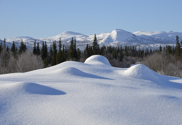 Snowmasses